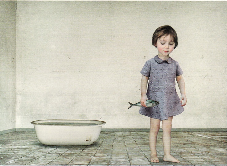 the fish  loretta lux