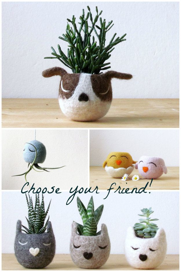 A unique home for a succulent. | 23 Incredibly Thoughtful Gifts Everyone Will Want