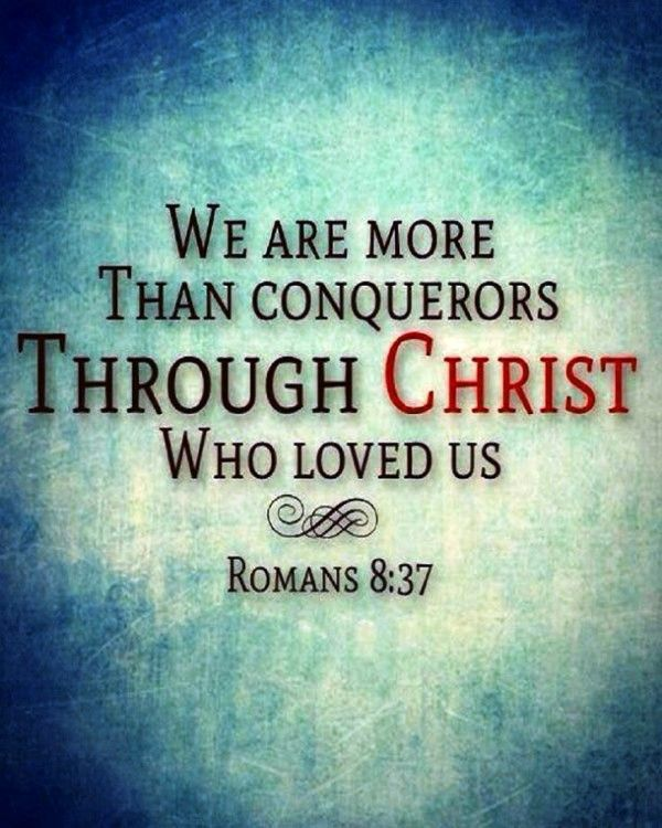 Verse of the Day: Romans 8:37 No, in all these things we are more than conquerors through him who loved us.  What joy it is to know that nothing, no tribulations, suffering, persecution, abs…
