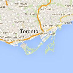 Toronto Dog Walks, Parks, and Off-Leash Areas | Blue Cross Animal Hospital | Toronto Veterinarian