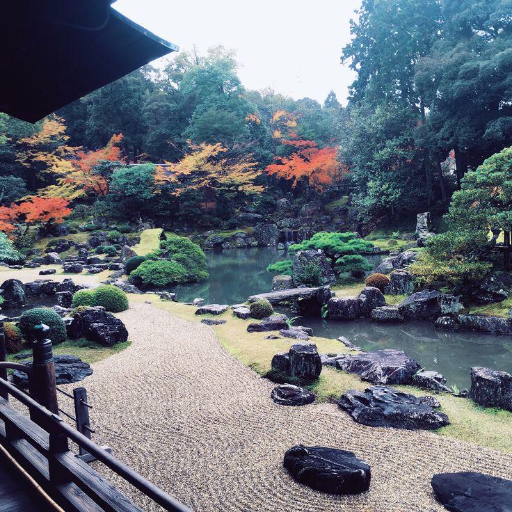 Daigo-ji Temple • Autumn leaves! A