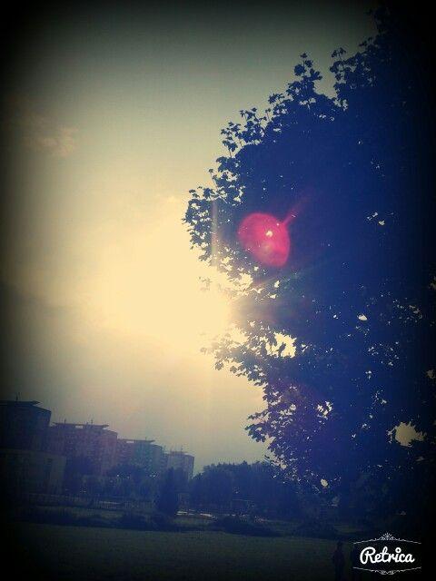 #Sun#tee