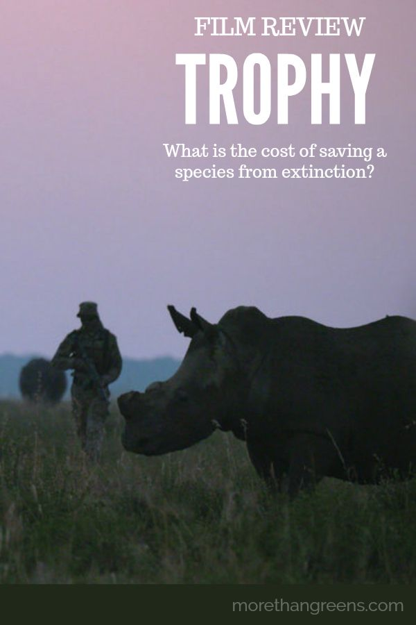 Trophy - What is the cost of saving a species from extinction? #filmreview #documentary #rhinos #conservation #wildlife