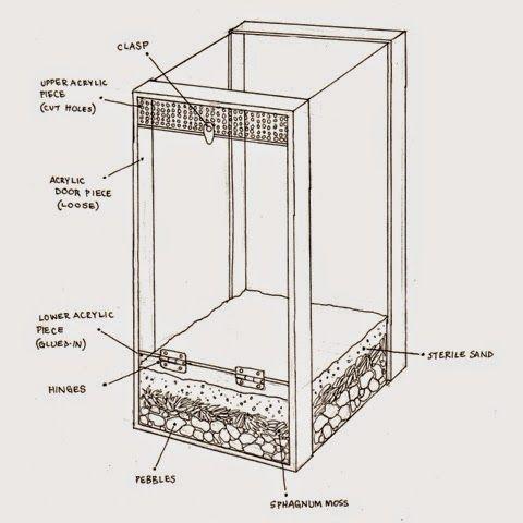 DIY: Gecko Vivarium | FALCO SPAVERIUS