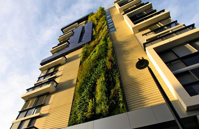 Trio Building, Sydney, NSW  #verticalgarden #greenwall #garden #landscape #sustainable
