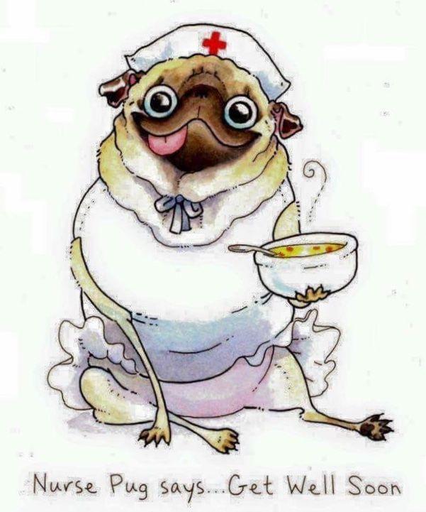 Pin By Luisa Sauter On Give A Dog A Bone Cute Dog Cartoon Pug