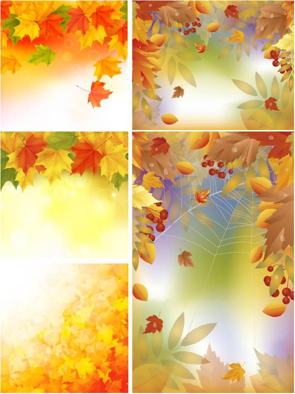 """Set of 5 vector fall leaves backgrounds with fall leaves borders and patterns for your card designs, posters, fall illustrations, covers and other designs. Format: EPS stock vector clip art and illustrations. Free for download. Set name: """"Fall leaves backgrounds""""…"""
