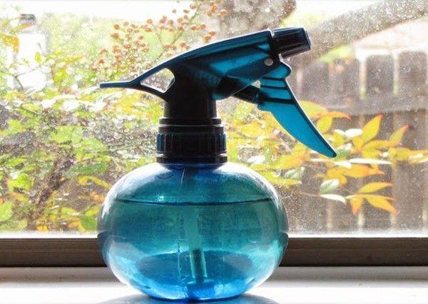 Des astuces pour vous débarrasser des mouches dans votre maison de manière efficace et définitive.