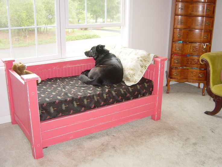 A Crib Size Pet Bed Made For Out Dog Sinatra Cool Dog