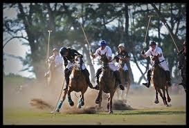 horse polo games - Google Search