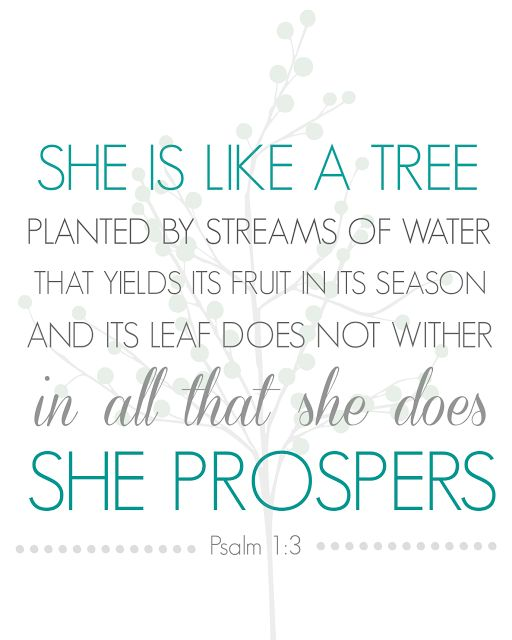 She is like a tree planted by the streams of water that yields its fruit in its season and its leaves does not wither and all that she does she prospers. psalm 1:3