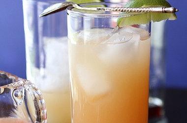 Pink Grapefruit Greyhound Cocktail — Punchfork