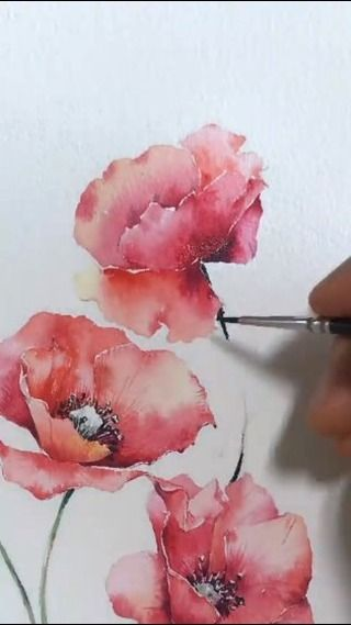 "Watercolor illustrations 🎨 on Instagram: ""…"