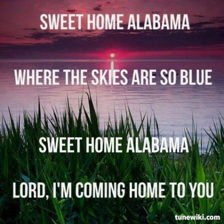 1000 ideas about lynyrd skynyrd songs on pinterest for Who sang the song sweet home alabama
