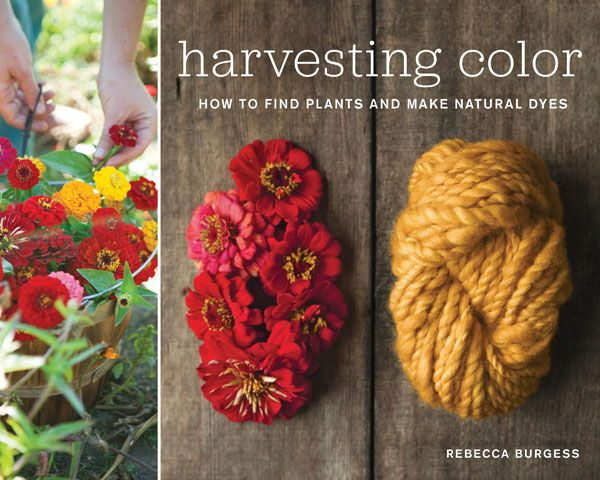 How to find plants and make natural dyes.