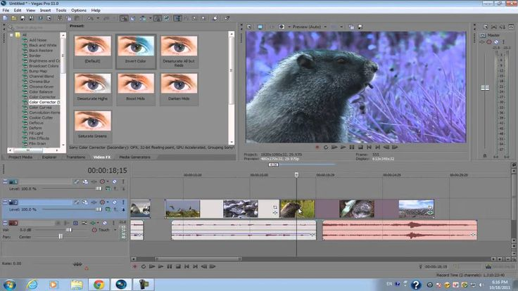 Sony Vegas Pro 11: Beginners Tutorial