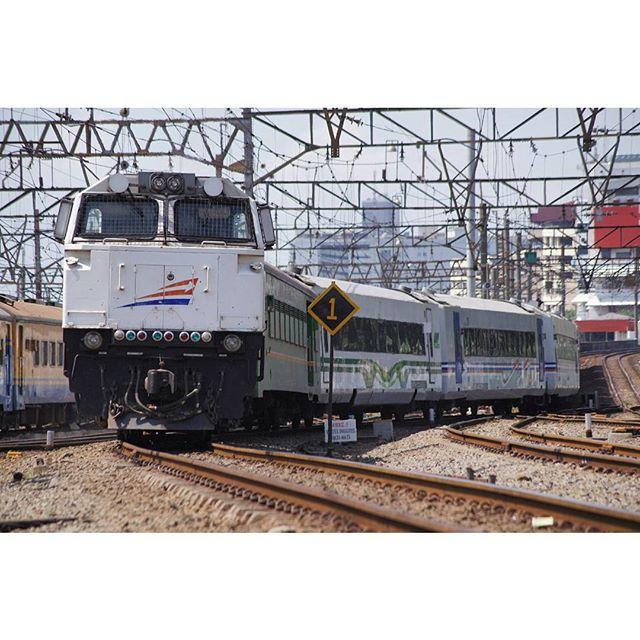 KA 11 Argo Sindoro  #train #railway #keretaapi #keretaapikita #eventinstakai #argosindoro #jakarta #jakartakota #explorejakarta #instanusantarajakarta #rsa_theyards #trains_worldwide #trainspotting #instatrain #eisenbahnfotografie by afriandiy