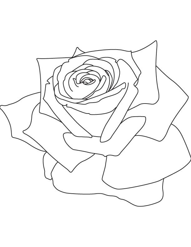 21 best holidays coloring sheet images on Pinterest ...
