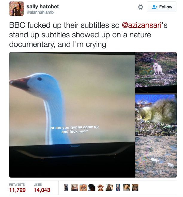 21 Times British Twitter Proved It Was The Funniest Place On The Internet