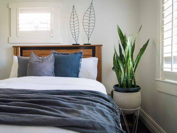 Dormir avec une plante dans la chambre est ce vraiment dangereux izylife plante interieur - Plante dans la chambre ...