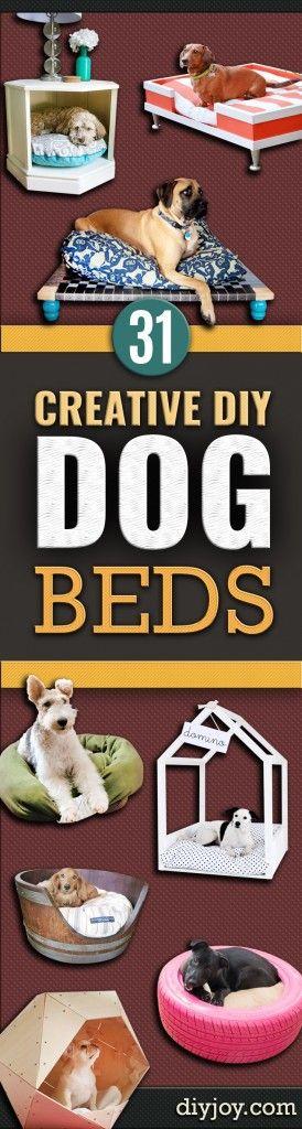 Best 25 Small Dog House Ideas On Pinterest Dog Houses