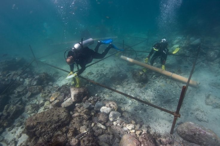 Shipwreck from Vasco da Gama's Armada Found off Arabian Peninsula | Atlas Obscura