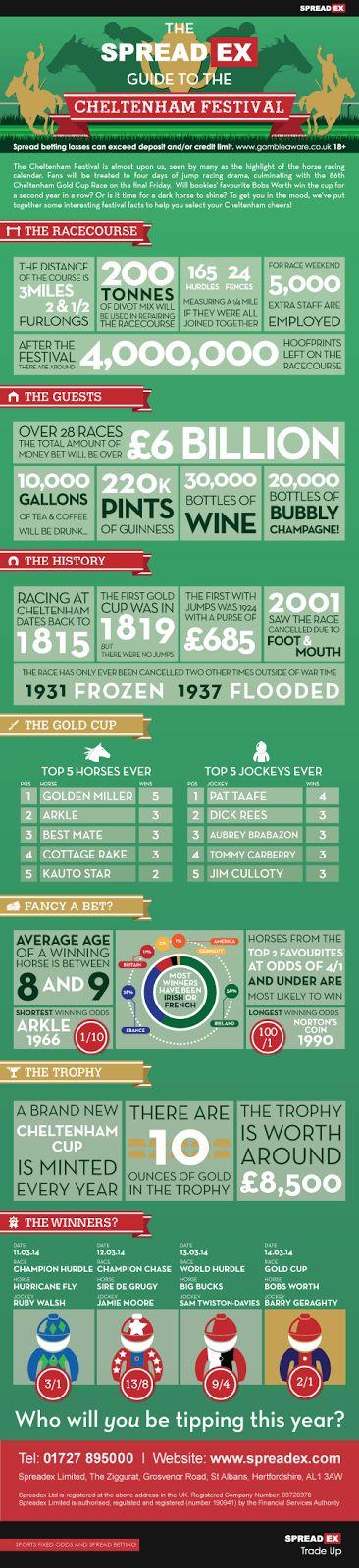 Racing Tips : 2014 Cheltenham Festival infographic