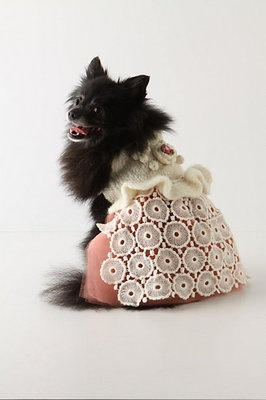 Fancy Dog DressDogs Dresses, Dogs Stuff, Puppies Dogs, Anthropology Dogs, Dogs Attire, Dogs Sweaters, Puppies Pinafore, Flower Girls, Dogs Clothing