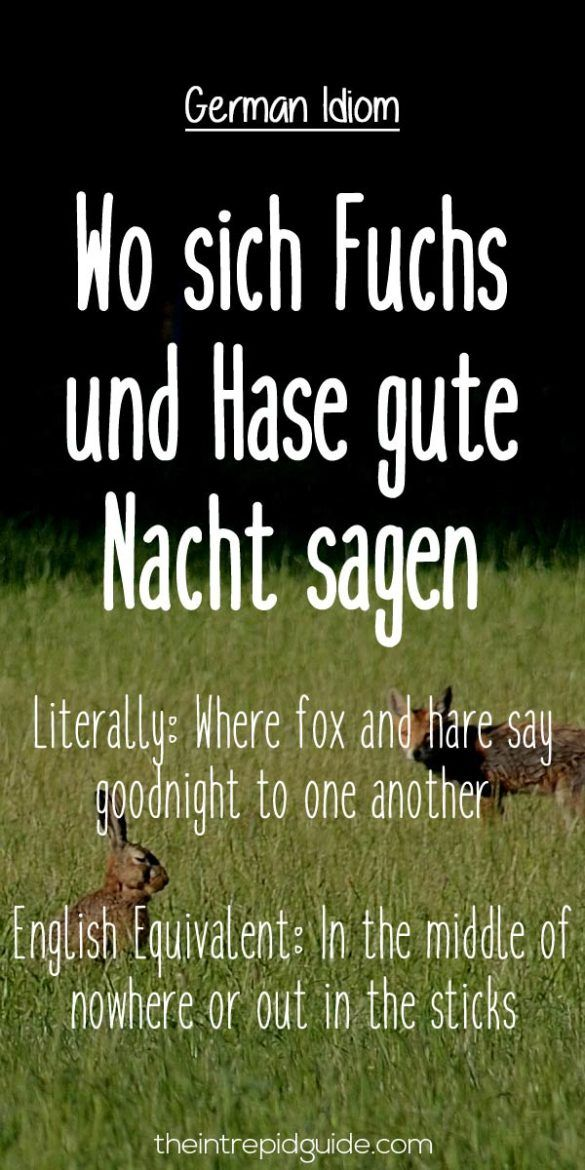 Fabulous  Hilarious Everyday German Idioms and Expressions