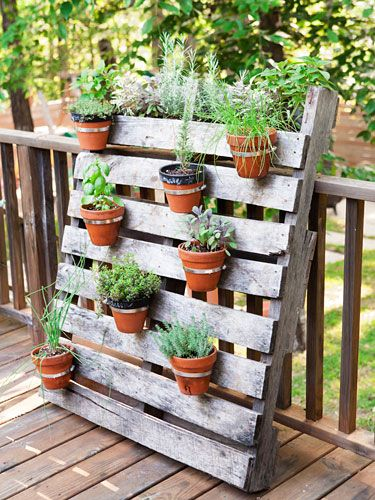 hardware-store hose clamps screwed onto a wood pallet, add pots and herbs, and lean it against the deck railing