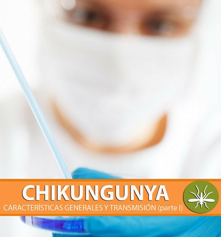 #Chikungunya | El virus que es transmitido por los mosquitos Aedes Aegypti y Aedes Albopictus. ¡OJO con los síntomas!. → http://ava.akademeia.ufm.edu/home/?publicacion=chikungunya-caracteristicas-generales-y-transmision-parte-l  #Virus #Fiebre #Mosquito #Guatemala #Salud