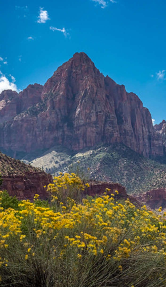 Zion National Park offers the most scenic campgrounds in the Southwest