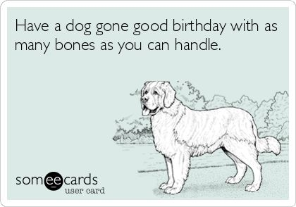 Free, Birthday Ecard: Have a dog gone good birthday with as many bones as you can handle.