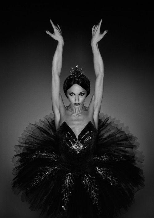 балерина, балет, красиво, чёрный лебедь, танец