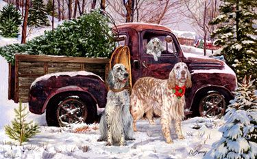 "English Setter Chrsitmas cards are 8 1/2"" x 5 1/2"" and come in packages of 12 cards. One design per package. All designs include envelopes, your personal message, and choice of greeting. Select your greeting from the drop-down menu above.Add your personal message to the Comments box during checkout."