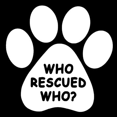 """If your dog has made an impact on your life, this is the perfect car decal for you! These weather resistant die-cut decals measure 4"""" x 4"""" and are easily seen on any car window. These decals are white"""