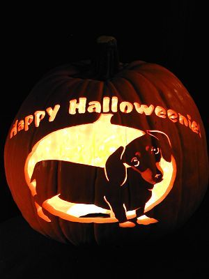 Dachshund-Happy Halloweenie!