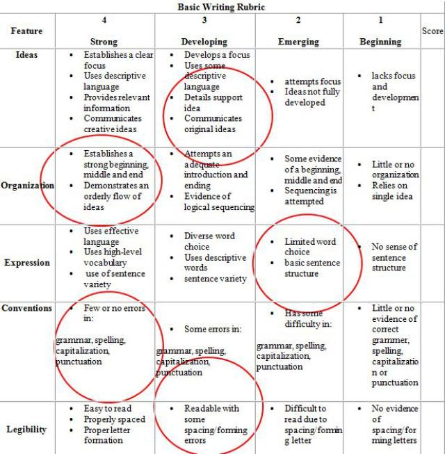 Rubric for assessing essays