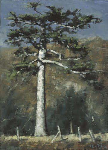 Richard Hearns -  majestic+pine.jpg (361×501)