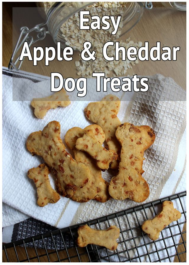 My Apple and Cheddar Dog Treat Recipe! Treat your pooch with these all natural dog biscuits that are absolutely delicious and super easy to make at home! DIY Dog Biscuits and Treats are the future and our pup loves them...and they're bone shaped!