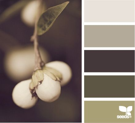 Berry TonesMuted Colors, Colors Schemes Espresso, Greige Colors Palettes, Living Room, Olive Colors Palettes, Painting Colors, Berries Tone, Olive Green Paint Color, Colors Inspiration