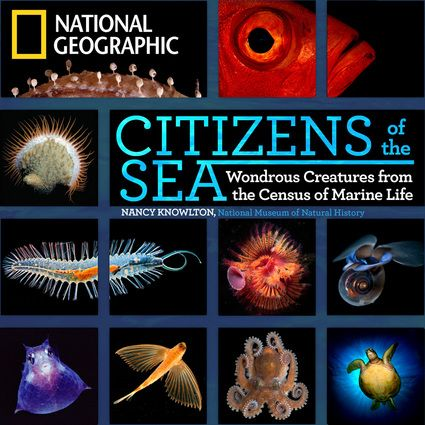 Citizens of the Sea book cover.jpg