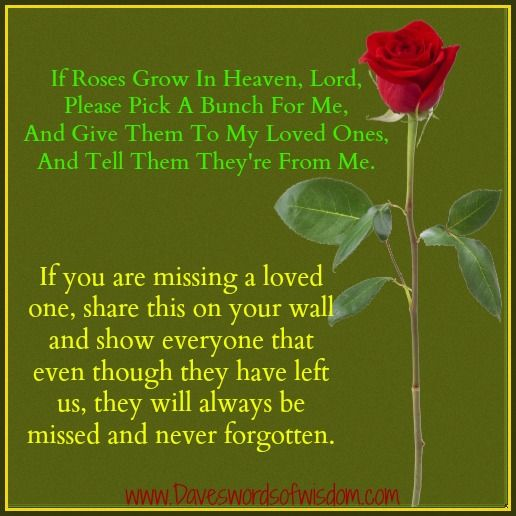 Heaven Quotes For Loved Ones: If Roses Grow In Heaven, Lord