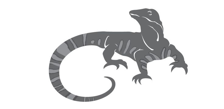 one of my logo lizard concepts for #goannabrewing (the chosen one!) - Inkling About Design www.inklingaboutdesign.com