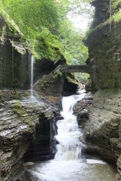 Watkins Glen State Park is the most famous of the Finger Lakes State Parks.