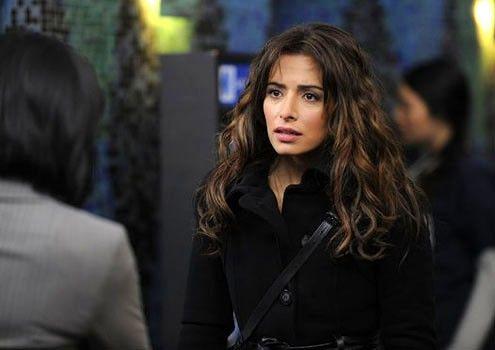 person of interest photos | Rejoice! More Sexy Sarah Shahi in Person of Interest Season 3