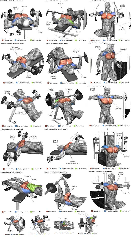 Manuale per attività fisica