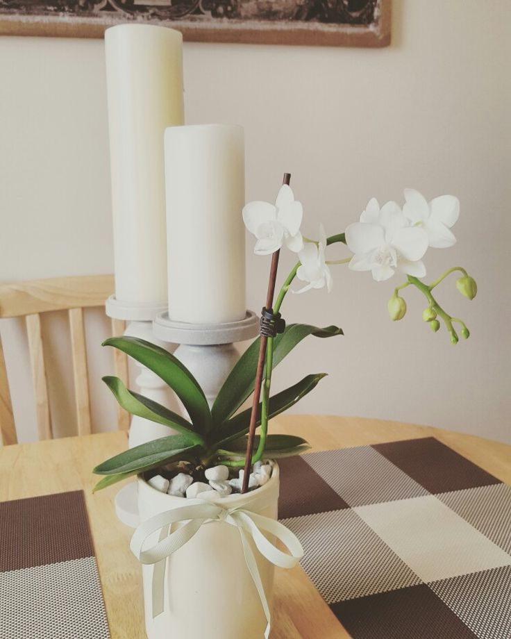 Candle stand white orchid dining table