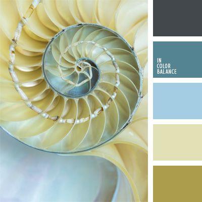 celeste y azul oscuro, celeste y beige, color concha de mar, color nacarado, elección del color, paleta de colores para decorar una boda, paleta de colores para una boda, tonos beige, tonos celestes, tonos pastel.