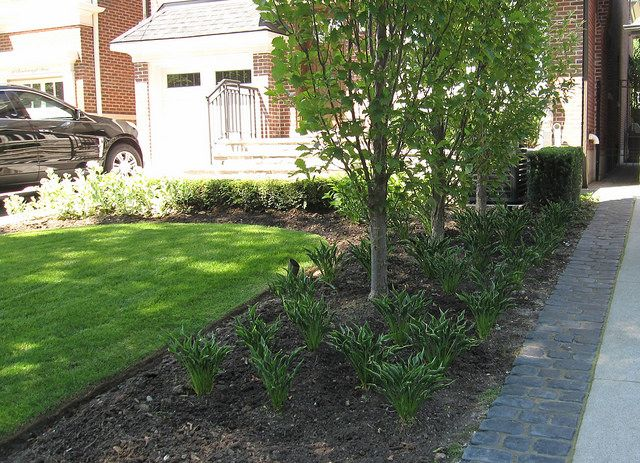 Front lawn land scaping green escapes pinterest for Garden scaping